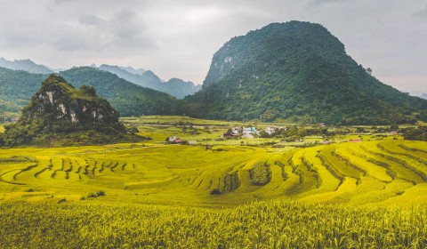 OFF THE BEATEN ROAD 5 DAYS ( MAI CHAU & PU LUONG NATURE RESERVE DICOVERY)